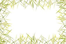 Free Bamboo Leave Frame Royalty Free Stock Images - 19705519