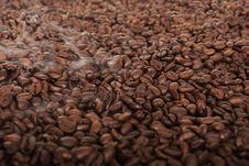 Free Fresh Roasted Coffee Beans Stock Photo - 19706090