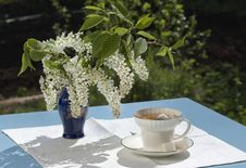 Free Cup Of Tea On Table In A Garden In The Spring Royalty Free Stock Images - 19707059