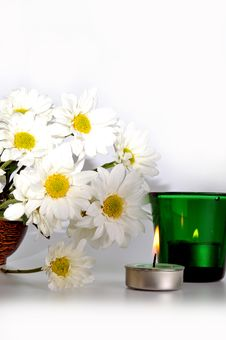 Free Simple White Daisies Stock Photo - 19707060