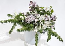Free Spring Bouquet Of A White Bird Cherry Royalty Free Stock Photography - 19707097