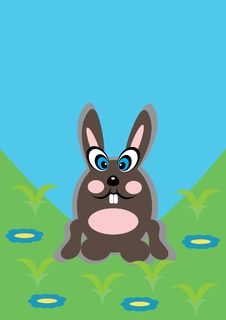 Free Cartoon Rabbit On Isolated Background Stock Image - 19707891