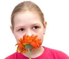 Free The Girl With A Flower Isolated Royalty Free Stock Image - 19708066