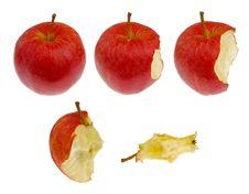 Free Apple Stock Photo - 19708760