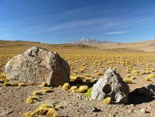Uturunku Volcano, Altiplano, Bolivia. Stock Images