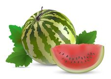 Free Watermelon With Slices Royalty Free Stock Photo - 19709495
