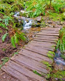 Free Mountain Trail. Royalty Free Stock Photography - 19709677
