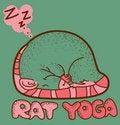 Free Rat Yoga Stock Photo - 19716870