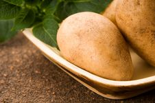 Free New Potato Stock Image - 19711821