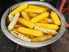 Free Steamed Corn Stock Images - 19713194