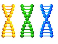 Free 3D Yellow, Green And Blue  Isolated  DNA Chains Stock Photos - 19714533