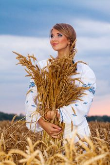 Free Girl In Field Stock Image - 19715101