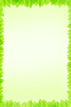 Free Green Leaves Background Royalty Free Stock Photo - 19715485