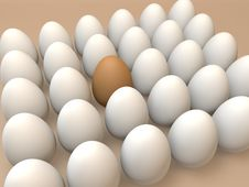 Free Eggs Stock Photo - 19716250