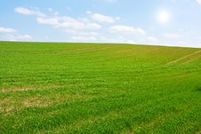 Free Sunny Green Hill Stock Photography - 19717062