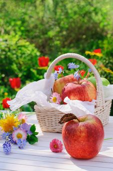 Free Red Apples In Basket And Flowers In The Garden Stock Photo - 19717550
