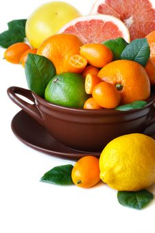 Citrus Fruit. Royalty Free Stock Photography