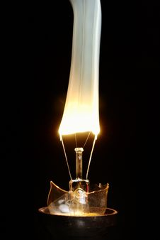 Free Bulb Stock Photo - 19720680