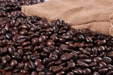 Free A Lot Of Coffee Beans Stock Photos - 19721983