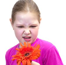 Free The Girl With A Flower Isolated Stock Image - 19723611
