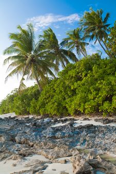 Free Coast Of Tropical Island Stock Photos - 19724483