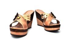 Ladies Shoes Stock Photo