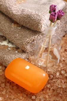 Free Hygiene And Spa Accessories Royalty Free Stock Photography - 19724837