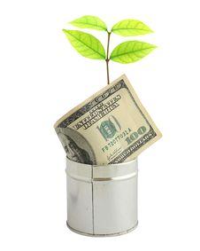 Free Saving Money Concept Stock Photos - 19726723