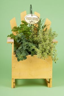 Free Fresh Mixed Herbs In A Wood Planter Stock Photo - 19726960