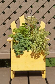 Free Fresh Mixed Herbs In A Wood Planter Stock Photography - 19727042