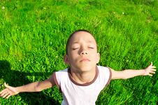 Free Young Boy On The Meadow Royalty Free Stock Image - 19728276