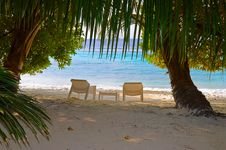 Free Chairs On Tropical Beach Stock Images - 19728894