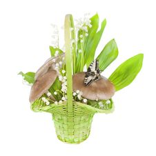 Free Bouquet Of Lilies Of The Valley, And Mushrooms Royalty Free Stock Photos - 19729108