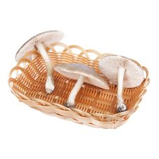 Free Mushrooms In Wicker Basket Royalty Free Stock Image - 19729766