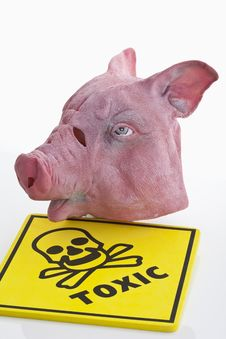 Free Swine-flu Stock Photos - 19730423