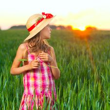 Free Cute Girl On Wheat. Royalty Free Stock Photos - 19730528
