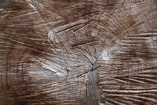 Free Texture Of The Wood Stock Image - 19730951
