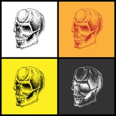 Free Set Of Doodle Skulls. Stock Photos - 19731173