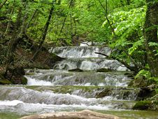 Free Waterfall In Wood Royalty Free Stock Image - 19731816