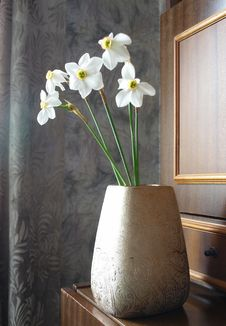 Free Vase Of White Daffodils Royalty Free Stock Photos - 19735988