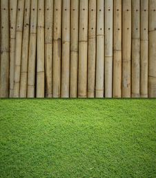 Free Bamboo And Grass Background Royalty Free Stock Photo - 19741015