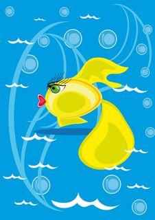 Free Cartoon Fish On Isolated Background Stock Photos - 19748963