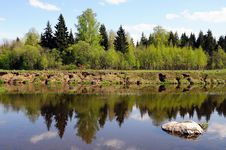 Beautiful Trees Are Reflected In Water Royalty Free Stock Images