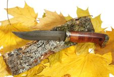 Free The Hunting Knife Stock Photography - 19749582