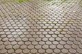 Free Wet Brick Floor Royalty Free Stock Image - 19758816