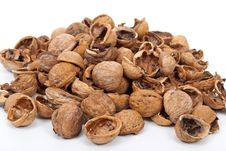 Free Walnut Shell Stock Image - 19751071