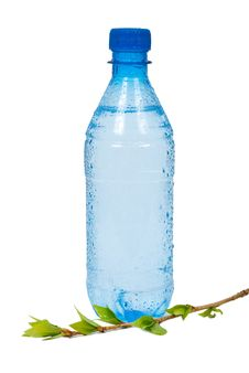 Free Bottle Of Water With Green  Branch Stock Photos - 19751123