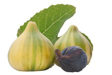 Free Ripe Fruits Of A Fig Royalty Free Stock Photography - 19751287