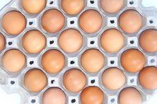 Free Egg Stock Photography - 19751842