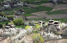 Free Tibetan Village Royalty Free Stock Images - 19752229
